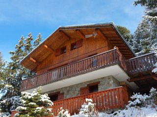 Chalet in Plagne 1800, France